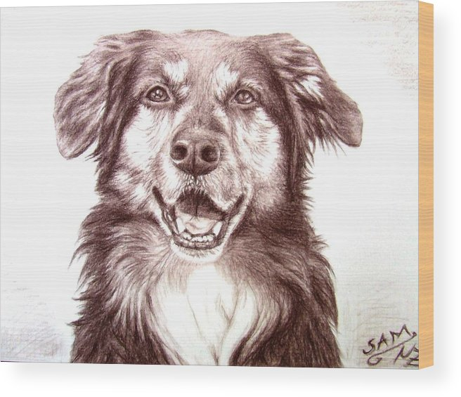 Dog Wood Print featuring the drawing Sam by Nicole Zeug