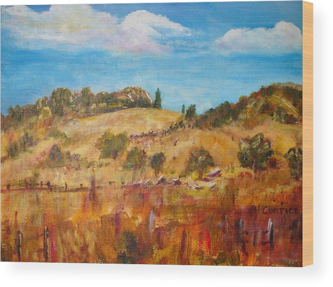 Landscape Wood Print featuring the painting San Diego Backcountry by Carolyn Curtice