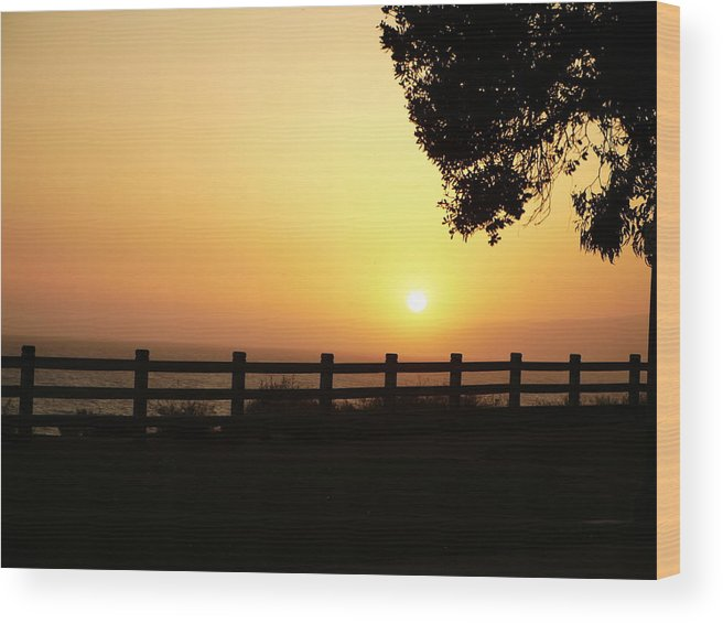 Wood Print featuring the photograph Santa Monica Sunset by Kareem Farooq