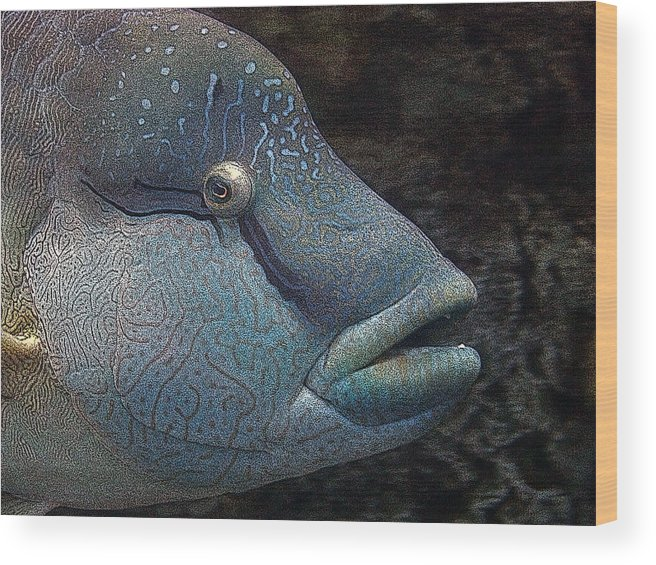 Fish Wood Print featuring the mixed media Sea Life 19 by Ernie Echols