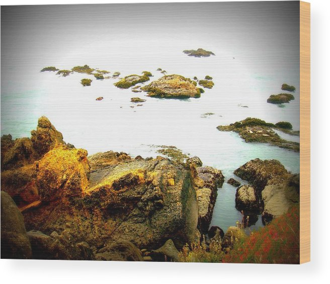 Ocean Wood Print featuring the photograph Serenity by Melissa KarVal