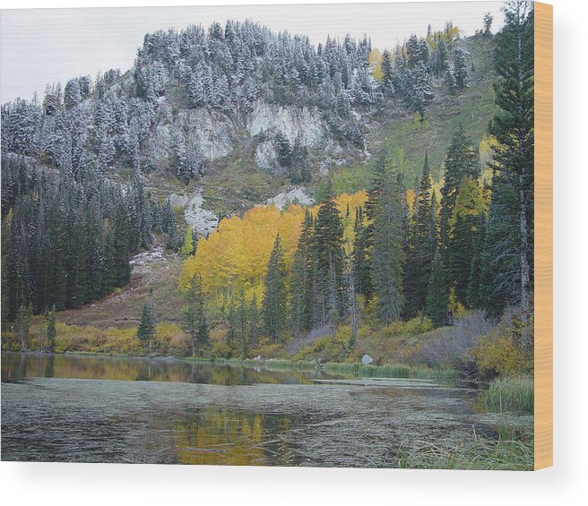 Silver Wood Print featuring the photograph Silver Lake Dusted by Derek Nielsen