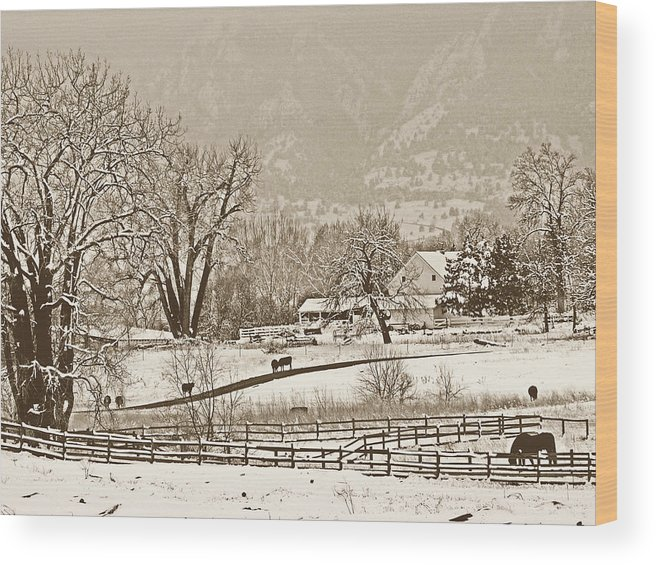 Landscape Wood Print featuring the photograph Simpler Times by Marilyn Hunt