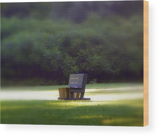 Sitting In The Sun Wood Print featuring the photograph Sitting In The Sun by Karen Cook