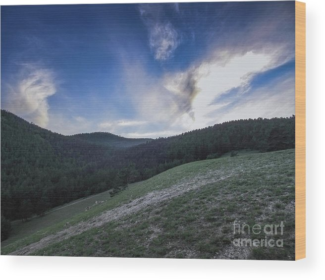 Mountains Wood Print featuring the photograph Sky And Mountains by Aleksei Musikhin