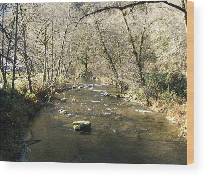 River Wood Print featuring the photograph Sleepy Creek by Shari Chavira
