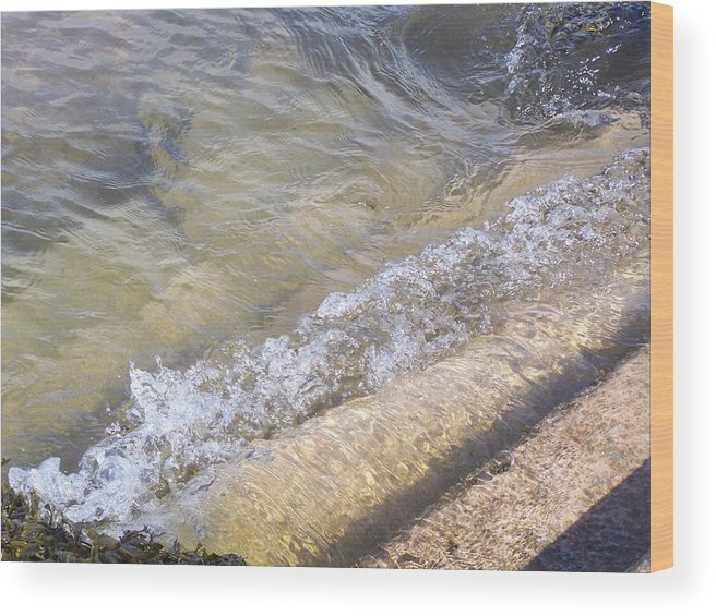 Steps Wood Print featuring the photograph Slippery When Wet by Christopher Rowlands