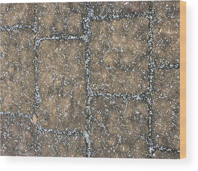 Paving Stones White Snow Pattern Wood Print featuring the photograph Snow Pellets by Scott Burd