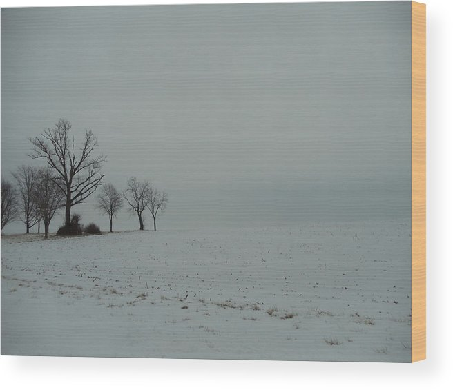 Landscape Wood Print featuring the photograph Snowy Illinois Field by David Junod