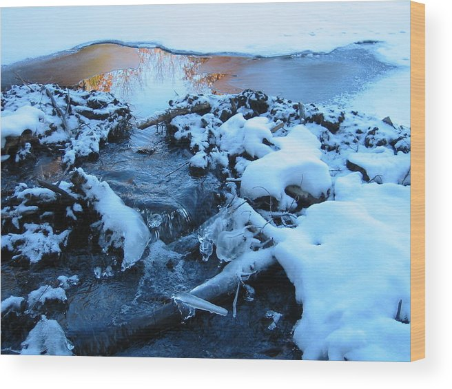 Snow Wood Print featuring the photograph Snowy Reflections by Angela Murray