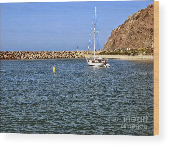 Sail Boat Wood Print featuring the photograph Soaking Up The Sun by Heather Gaines