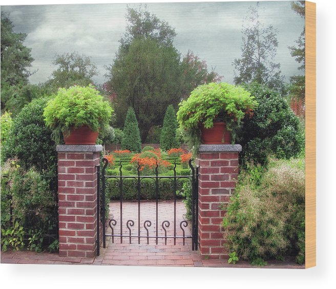 Garden Wood Print featuring the photograph Spring Garden by Jessica Jenney