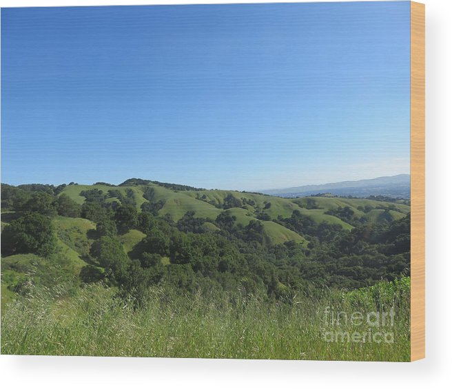 Landscape Wood Print featuring the photograph Spring Ridge by Suzanne Leonard