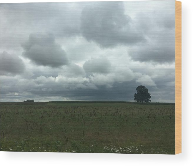 Wood Print featuring the photograph Standing Strong Against The Impending Storm by Christine Rivers