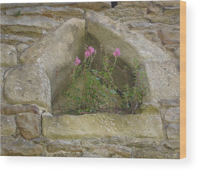 Flowr Wood Print featuring the photograph Stone Wall Determination by Susan Baker