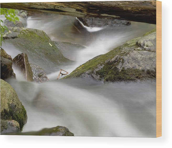 Stream Wood Print featuring the photograph Stream In Motion by Jim DeLillo