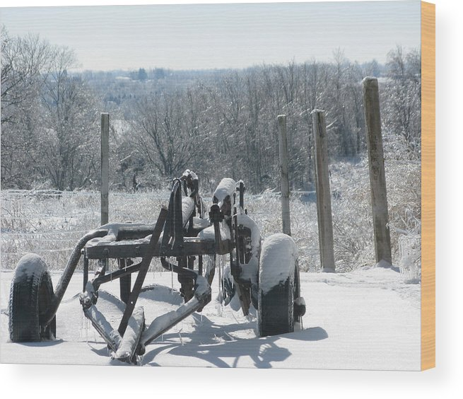 Landscape Wood Print featuring the photograph Stuck In The Snow by Martie DAndrea