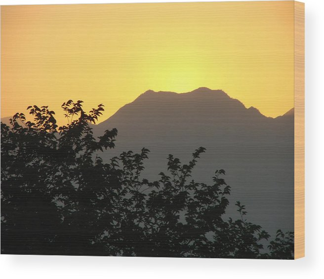 Sunset Wood Print featuring the photograph Summer Sunset by Liz Vernand