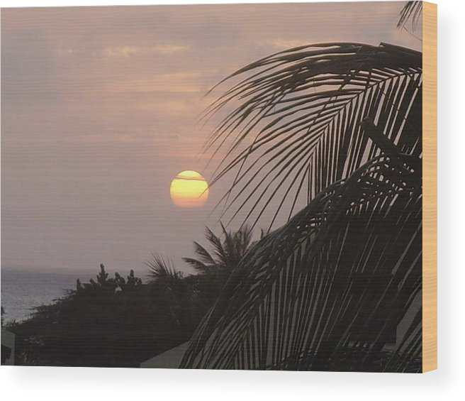 Sunset Wood Print featuring the photograph Sunset In Aruba by Donna Davis