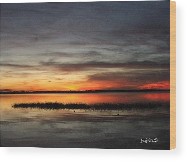 Sunset Wood Print featuring the photograph Sunset On Lake Lochloosa by Judy Waller