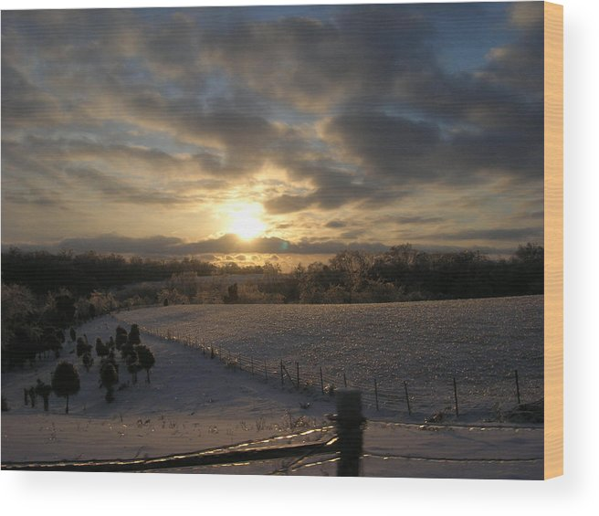Sunset Wood Print featuring the photograph Sunset On The Farm by Martie DAndrea