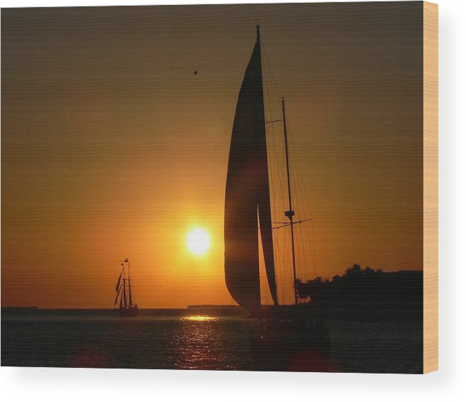 Sunset Wood Print featuring the photograph Sunset Sail by Deborah Carroll