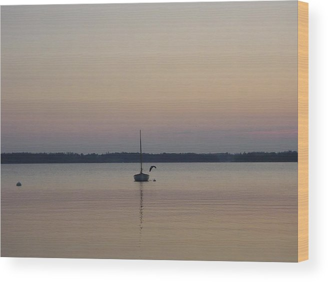 Maine Wood Print featuring the photograph Sunset Sailing by Kelly Mezzapelle