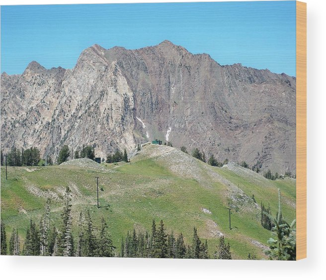 Landscape Wood Print featuring the photograph Superior by Michael Cuozzo