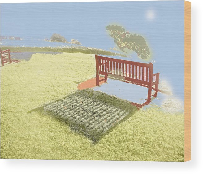 Photography Wood Print featuring the photograph The Bench At The Edge Of The World by Dan McCarthy