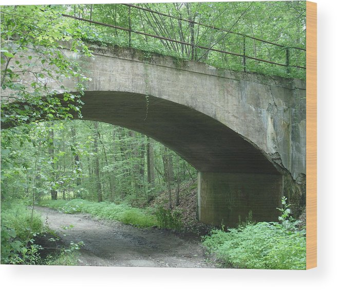 Bridge Wood Print featuring the photograph The Bridge by Robyn Leakey