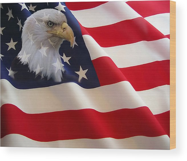 Nature Eagles American Flag Wood Print featuring the photograph The Eagle Flag by Evelyn Patrick