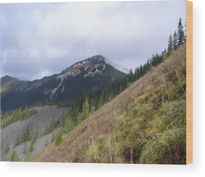 Landscape Wood Print featuring the photograph The Goal by Mark Camp