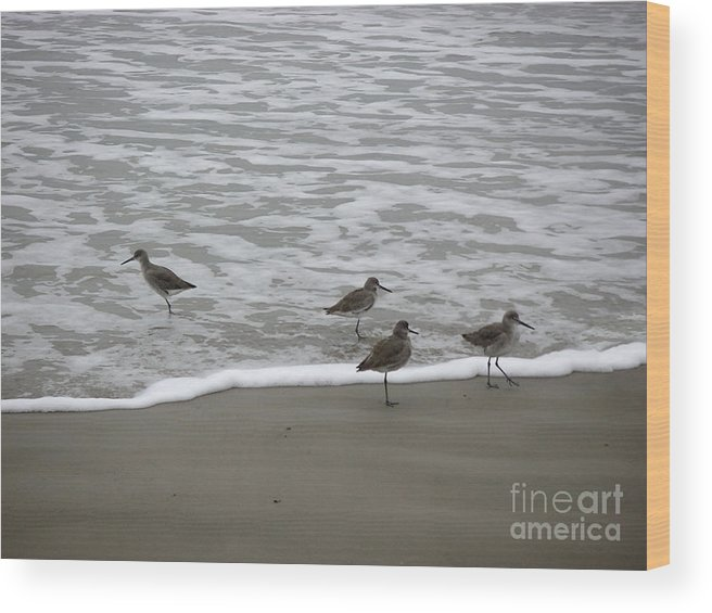Nature Wood Print featuring the photograph The Gulf In Shades Of Gray - One Opposed by Lucyna A M Green
