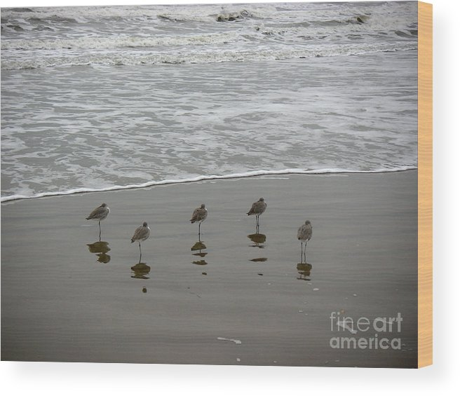 Nature Wood Print featuring the photograph The Gulf In Shades Of Gray - Perfect Wave by Lucyna A M Green