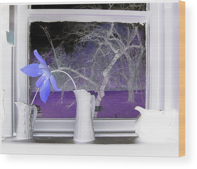 Nature Wood Print featuring the photograph The Kitchen Window by Rose Dellinger