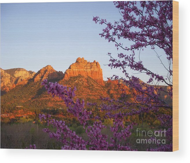 Sedona Wood Print featuring the photograph The Light Within by Amy Strong