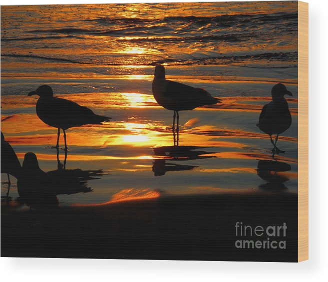 Sunset Wood Print featuring the photograph The Sun Has Nearly Set by PJ Cloud