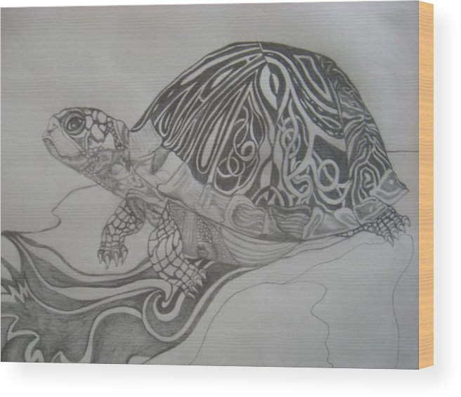 Water Wood Print featuring the drawing The Turtle by Theodora Dimitrijevic