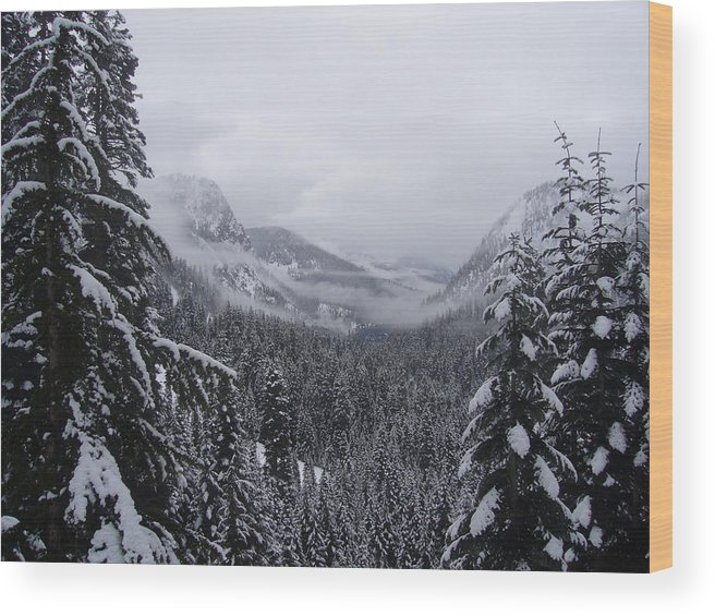 Landscape Wood Print featuring the photograph The Valley by Mark Camp