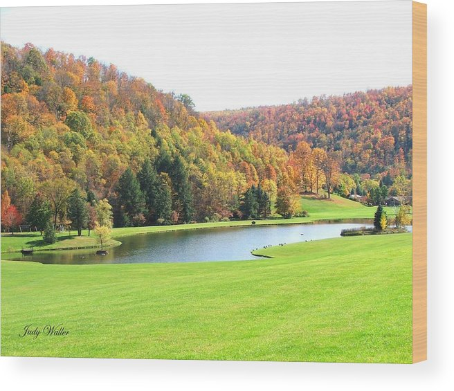 Pond Wood Print featuring the photograph The View In The Valley by Judy Waller