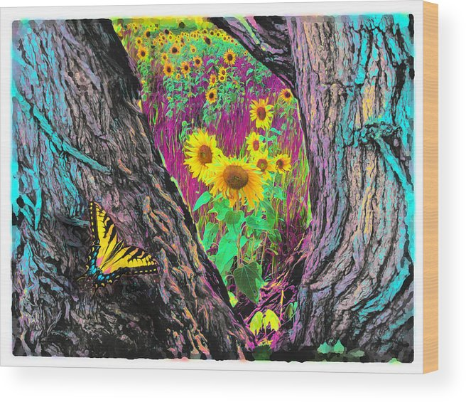 Butterfly Posters Wood Print featuring the photograph Through The Trees by Gina Signore