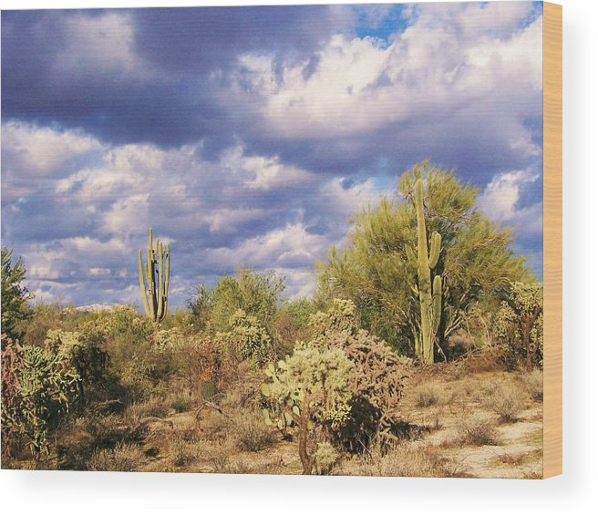Desert Wood Print featuring the photograph Tree Cactus by Kathleen Heese