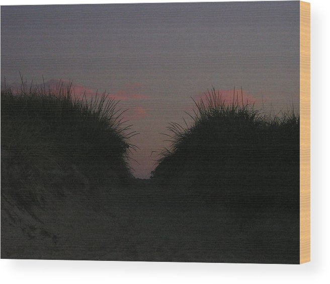 Dunes Wood Print featuring the photograph Twin Dunes At Dusk by Donna Davis