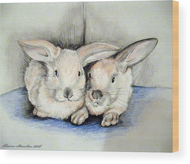 Rabbits Wood Print featuring the drawing Twins by Sharon Marcella Marston