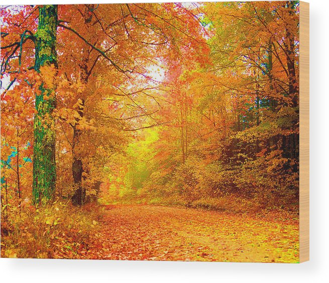 Landscape Wood Print featuring the photograph Vermont Autumn by Vicky Brago-Mitchell