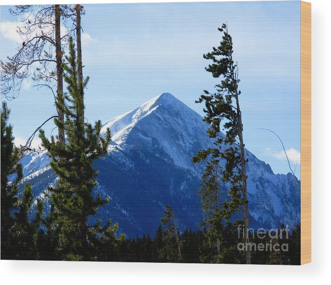 Mountain Wood Print featuring the photograph View From The Top by PJ Cloud