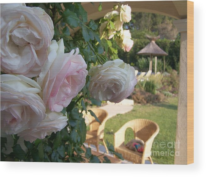 Roses Wood Print featuring the photograph Villa Roses by Nadine Rippelmeyer