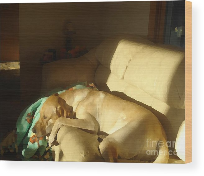 Dog Wood Print featuring the digital art Warm Sun by John Bichler