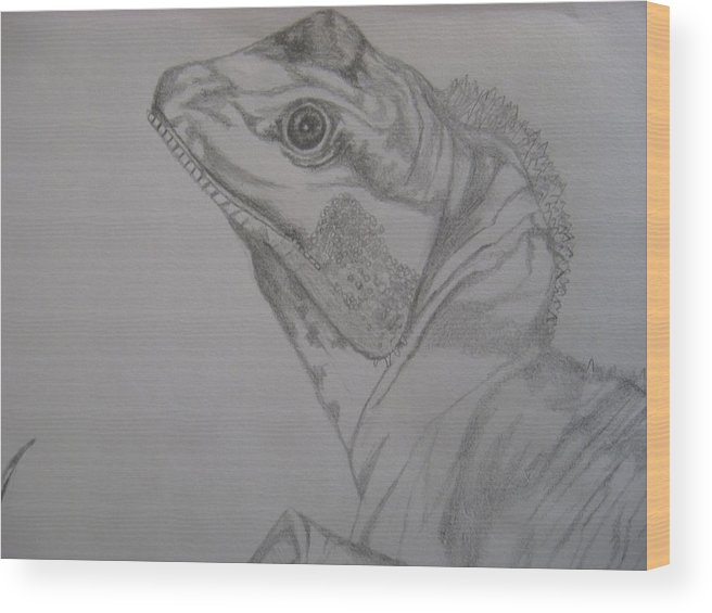 Dragon Wood Print featuring the drawing Waterdragon Up Close by Theodora Dimitrijevic