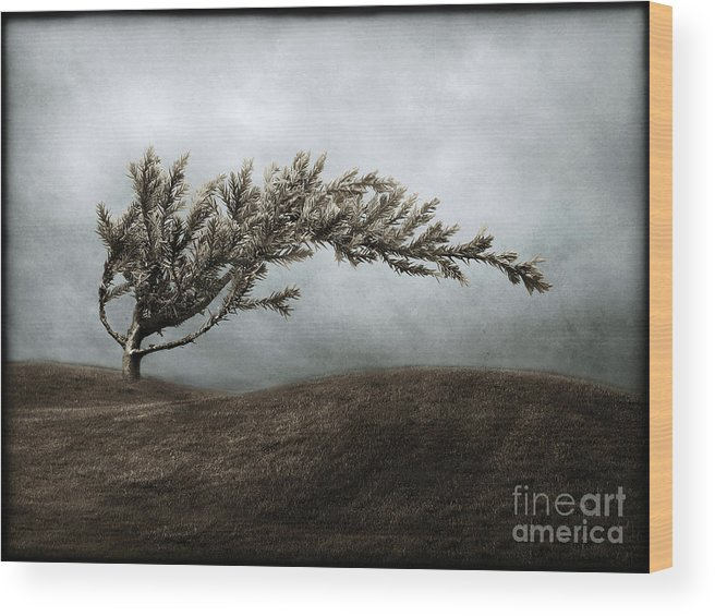 Bend Wood Print featuring the photograph We Break And We Bend And We Turn Ourselves Inside Out by Dana DiPasquale
